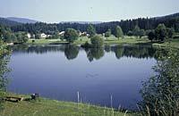Sommerferien am Nationalpark Bayerischer Wald