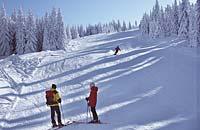 Winterlaub in Mauth-Finsterau im Bayerischen Wald